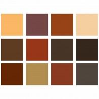 GIOTTO Farbstifte Stilnovo 12 Farben Skin Tones Hautfarben-Töne